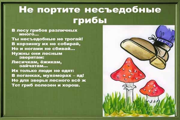 грибы, ядовитые, уничтожать