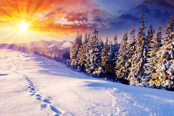 солнце, свет, греть, зима