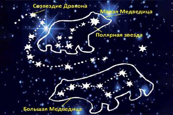 медведица, созвездие, медведь
