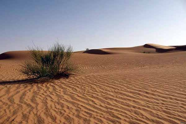 вода, пустыня
