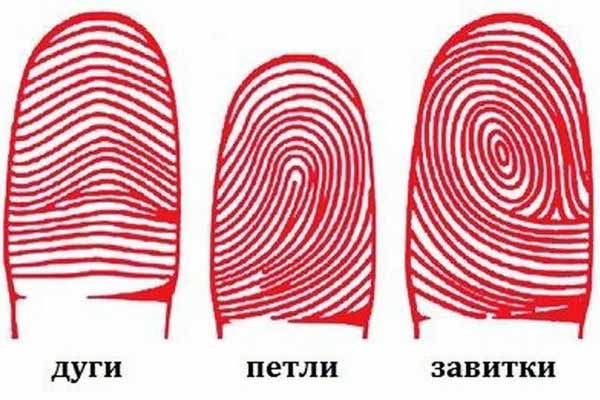 отпечатки, пальцы, разные